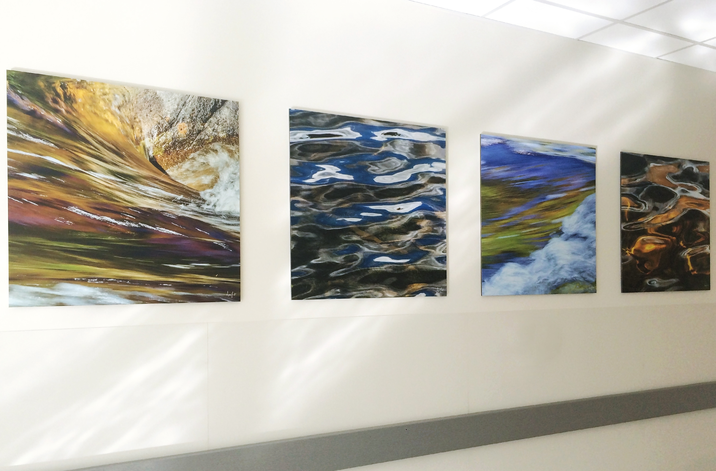 Photo of abstract nature image on Moxie panels in hospital waiting area