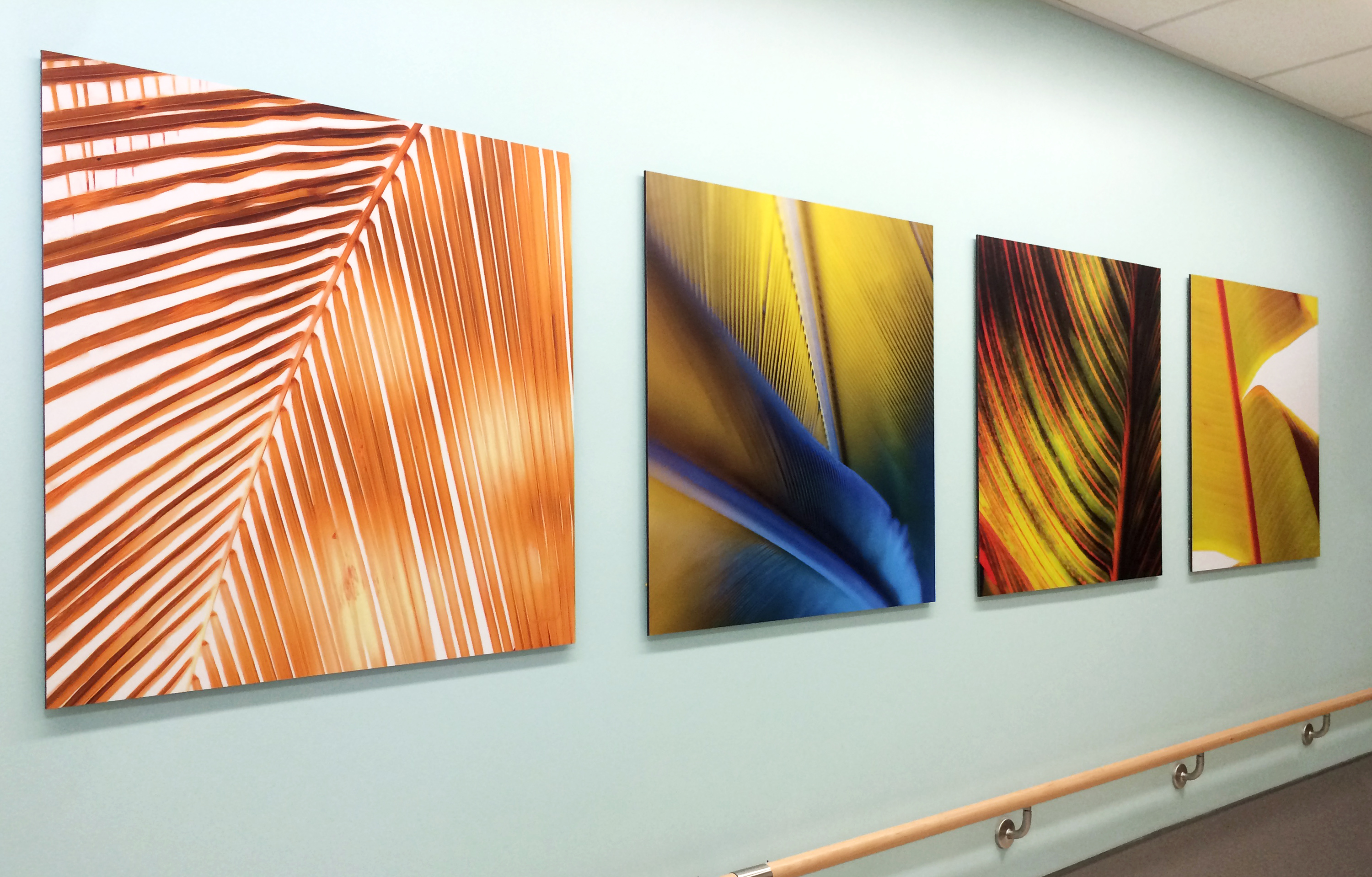 Photo of a palm leaves image on Moxie panels in hospital waiting area