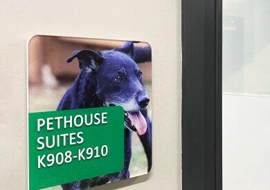 Photo of Vivid signage at dog sanctuary