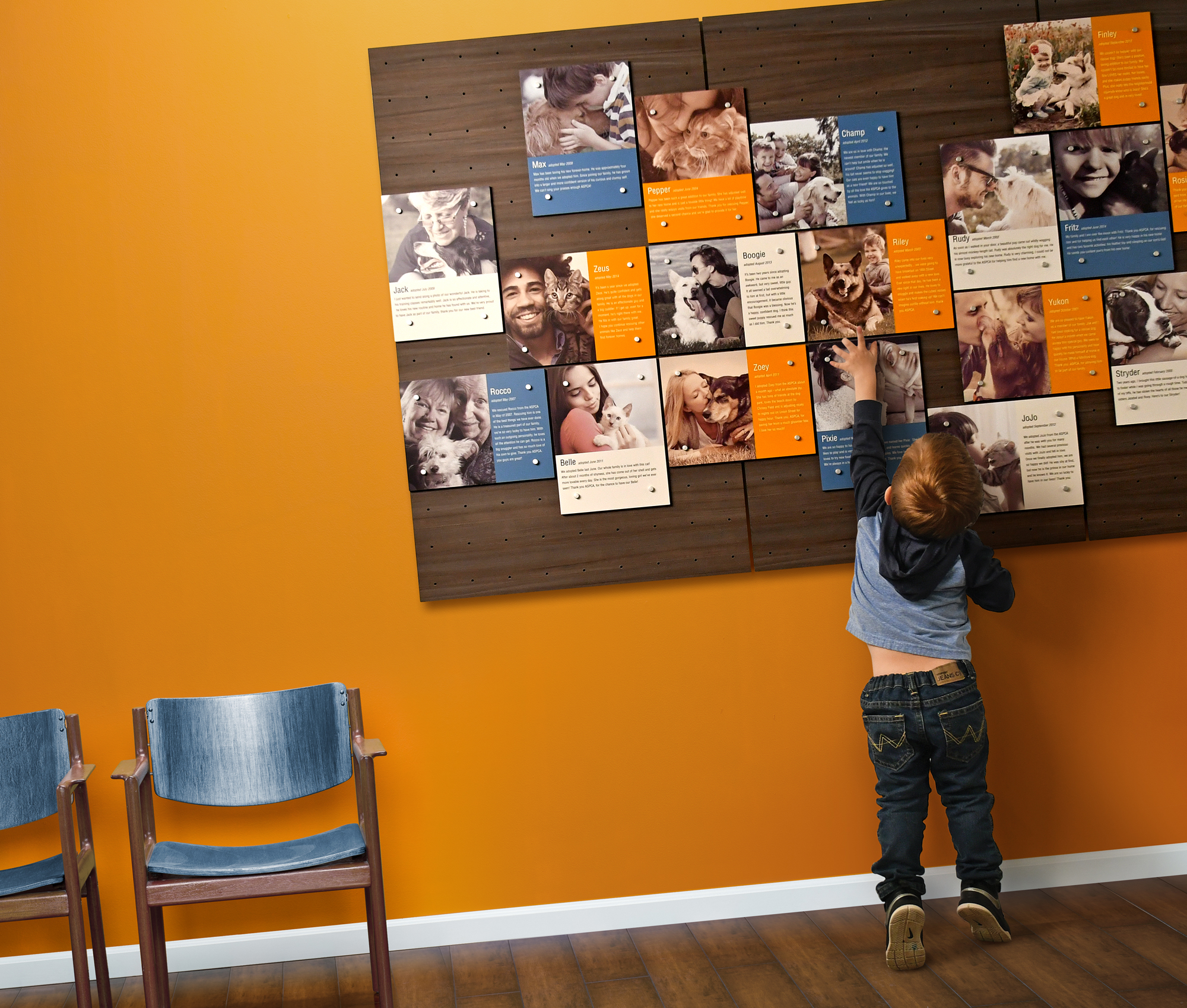 Humane Society Applaud recognition wall photo
