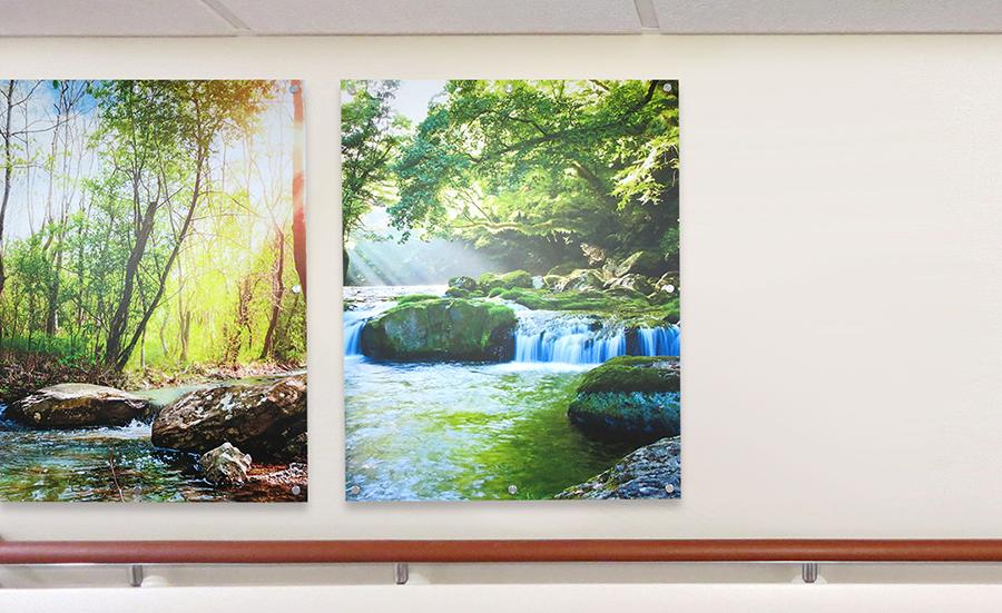 Photo of Moxie panels of waterfalls in hospital hallway